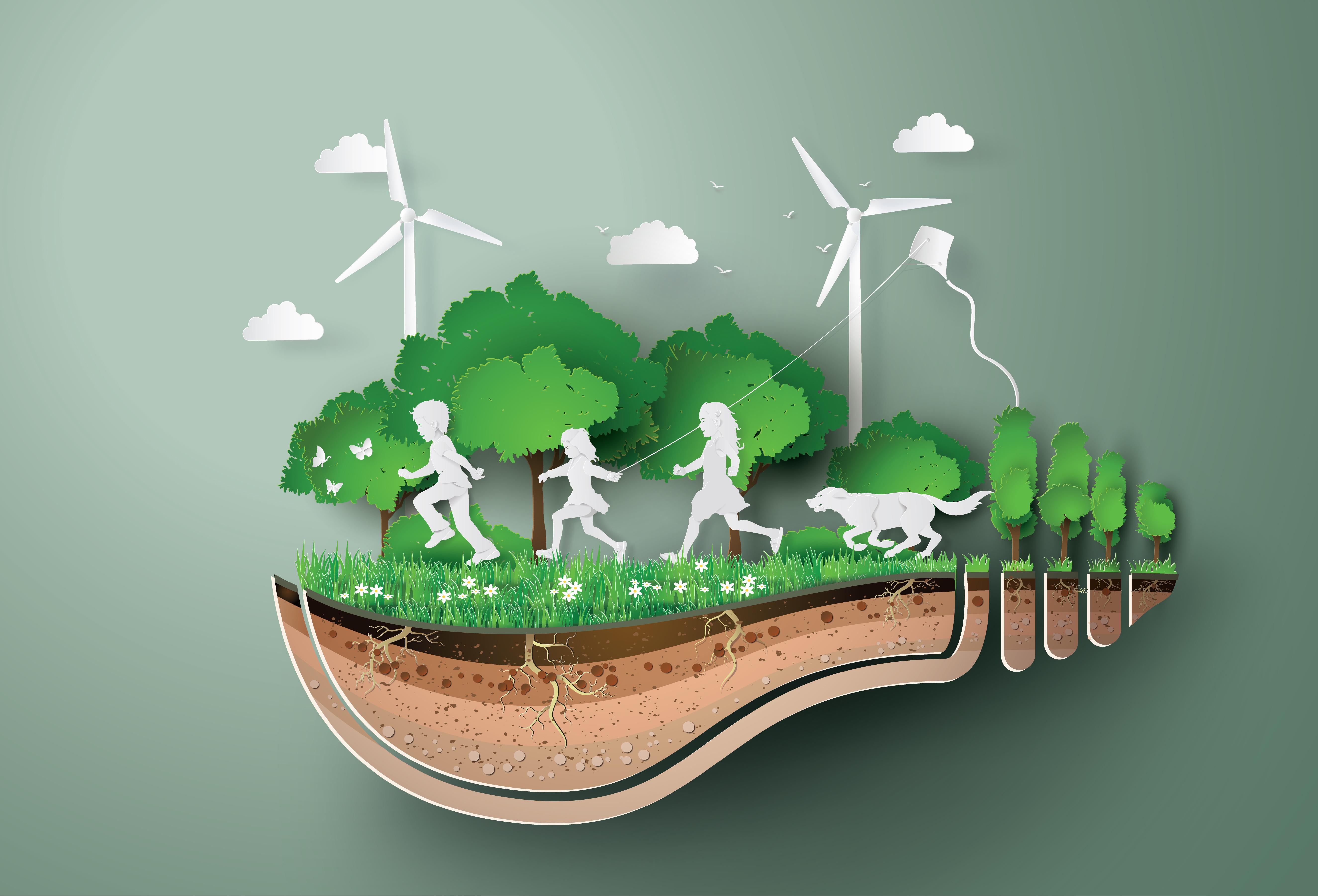 Подведены итоги конкурса «Урок экологии и энергосбережения»